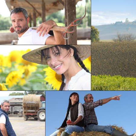 agricultural life: Farm work
