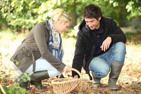 Couple gathering mushrooms photo