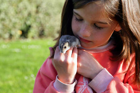 rodent: Young girl holding a rodent Stock Photo