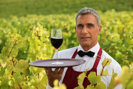 Man serving a glass of red wine in the middle of a vineyard photo