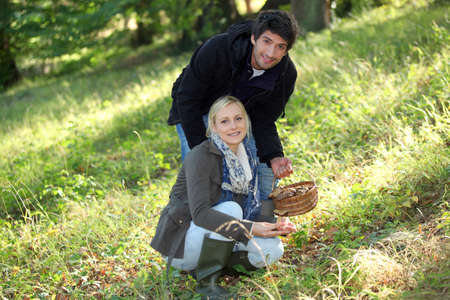Couple collecting mushrooms in the forest photo