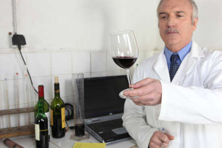 Oenologist examining glass of wine photo