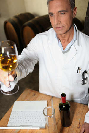 wine testing: Wine testing Stock Photo