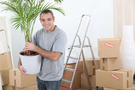 housewarming: Man moving house with a plant
