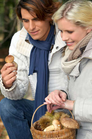 Couple picking mushrooms photo