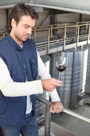 winemaker: Oenologist with a glasswine