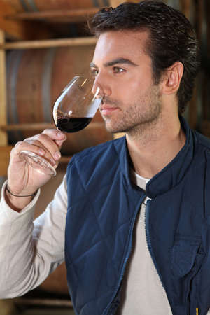 winemaker: Man tasting wine in winery