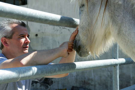 Man stroking the nose of a horse photo