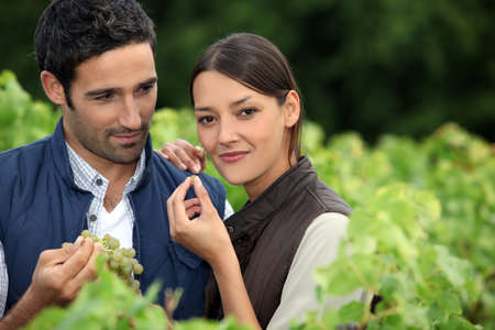 Couple in a vineyard Stock Photo - 12249685