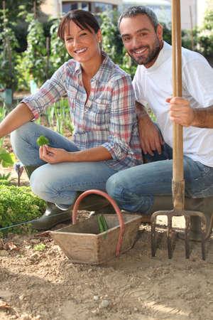 woman gardening: couple working in a kitchen garden Stock Photo