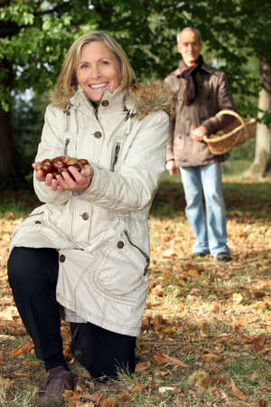 Middle aged couple picking chestnut. photo