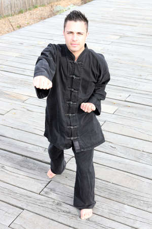 Tai Chi teacher Stock Photo - 12251947