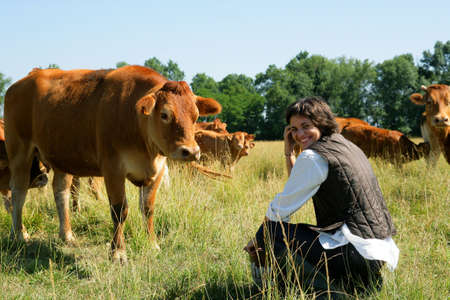 dung: Farmer kneeling by cows in field Stock Photo