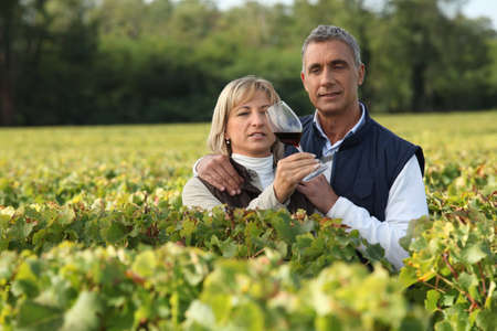 Farming couple holding glass of wine in vineyard photo
