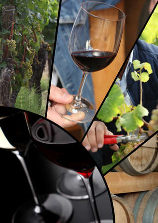 terroir: Collage of wine images and terroir