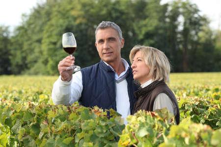 40 45: Couple tasting wine in vineyard Stock Photo