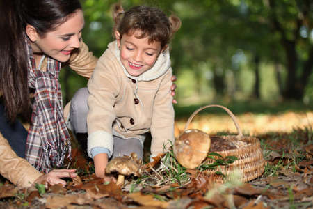 fall mushroom: a mother and her little girl picking mushrooms in the forest