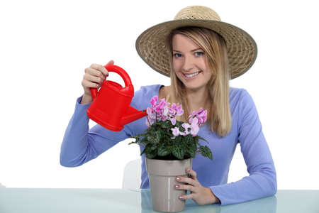 Young woman watering a potted plant photo