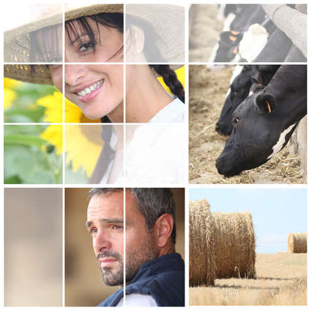 Mosaic of farming couple photo