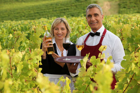 waitress and sommelier in vineyards Stock Photo - 12909058