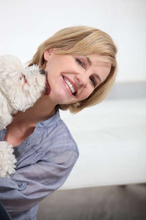 40 45: Dog licking woman Stock Photo