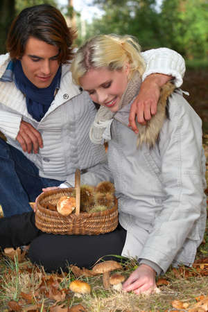 Couple picking wild mushrooms photo