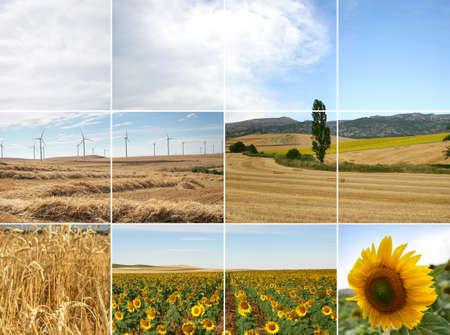 inexhaustible: Wind Power