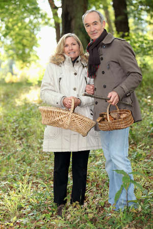50 to 55 years old: Couple collecting wild mushrooms Stock Photo
