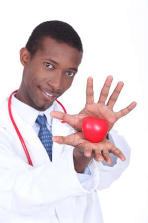 plastic heart: Medico in possesso di un cuore di plastica tra le mani Archivio Fotografico