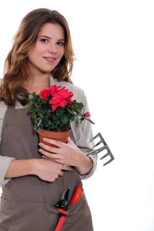 gardener carrying plant, tool Stock Photo - 13582714