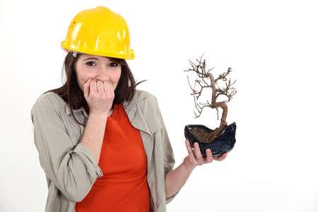 non urban: Apologetic woman holding burnt tree