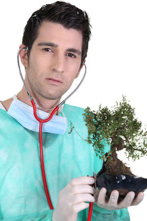 treatment plant: Doctor using stethoscope on bonsai
