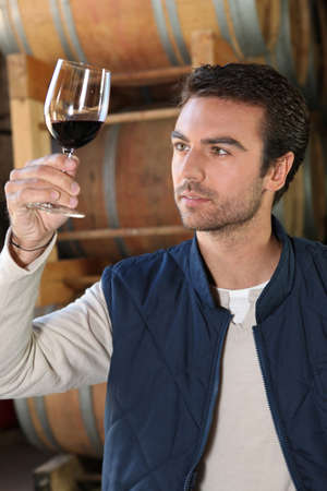 Winemaker in cellar with wine glass Stock Photo - 13803989