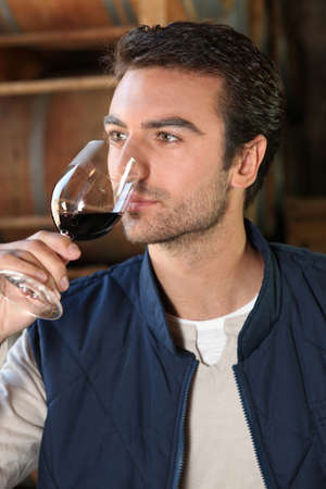 olfaction: Man smelling wine