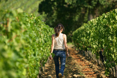 woman walking in a vineyard photo