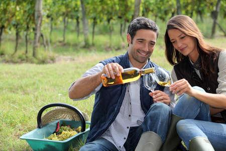 tasting wine: Winegrowers tasting wine