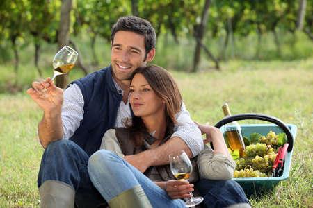 Coppia godendo di una bottiglia di vino, mentre uva raccolta Archivio Fotografico