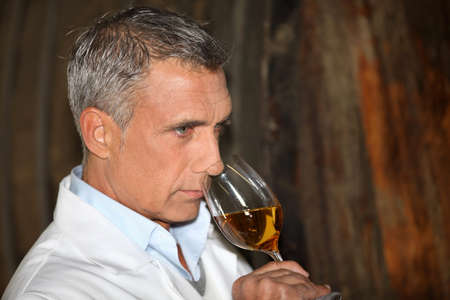 terroir: Man tasting wine