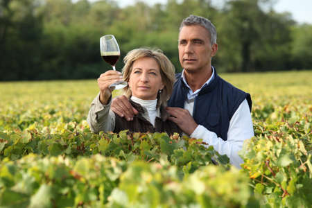 weinverkostung: Paar �berpr�fung Wein in einem Weinberg