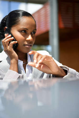 Businesswoman talking on her mobile phone Stock Photo - 13828055