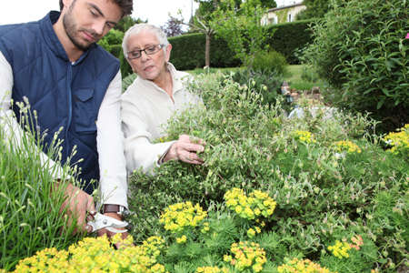 older woman: young man gardening with older woman