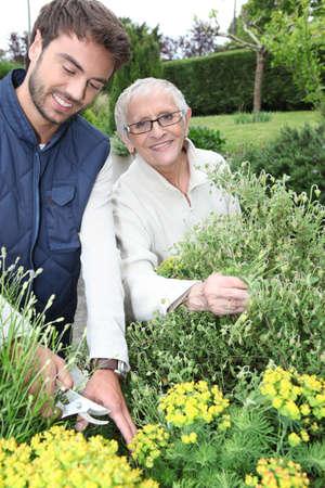 aide à la personne: jardinage jeune homme avec femme plus âgée