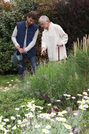 regando plantas: Senior regar las plantas jardinero Foto de archivo