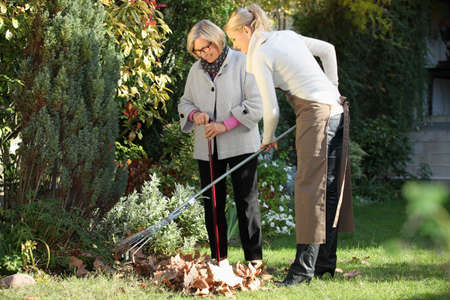 Elderly woman with her gardener Stock Photo - 13866966