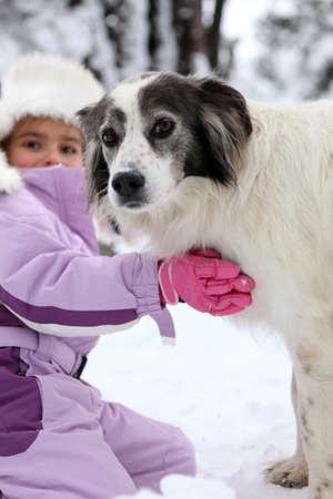 Young girl hugging her dog Stock Photo - 13880943