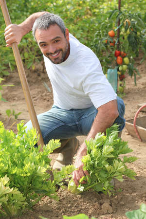 jardinero: El hombre tiende a su jardín