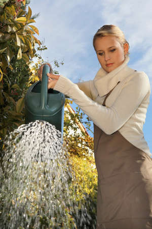 Women in the garden watering her plants photo