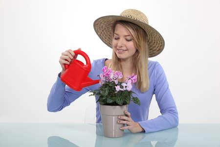 tertiary: Girl watering plants Stock Photo