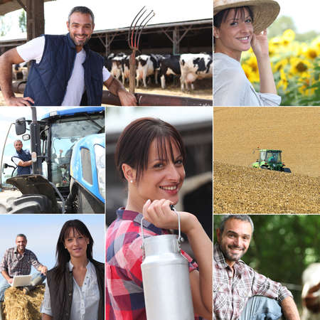 farm worker: Life on the farm collage Stock Photo
