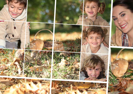 season photos: Mushroom picking in the forest collage